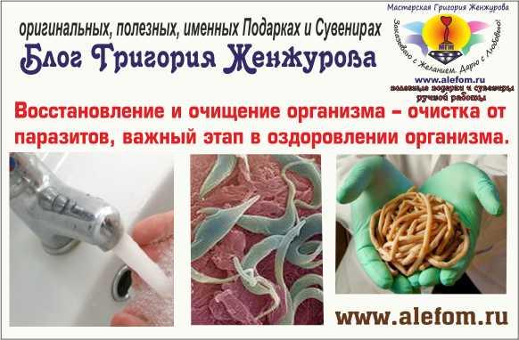 Очищение кишечника от паразитов домашних условиях