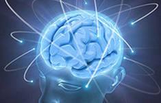 питание для мозгов