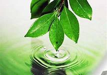 экология и вода