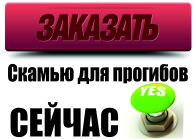 knopka-zakazat-skamyu-dlya-progibov-seychas