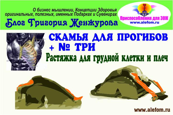 rastyazhka-dlya-grudnyih-myishts-i-plech
