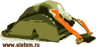 skamya-dlya-progibov-rastyazhka-myishts-plech-i-grudi