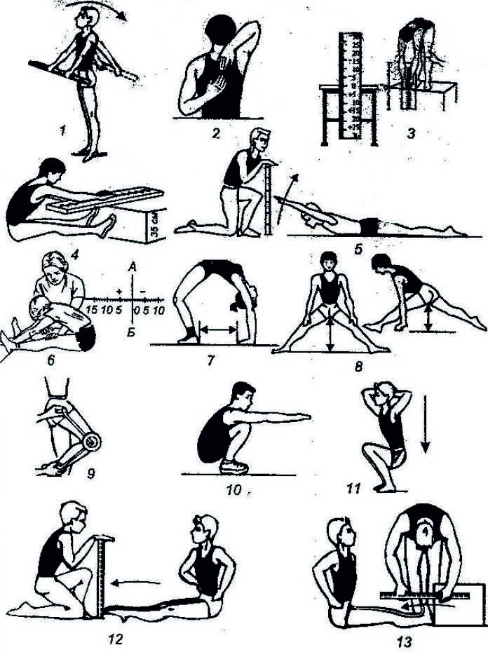 Комплекс упражнений Как развить гибкость тела в домашних условиях